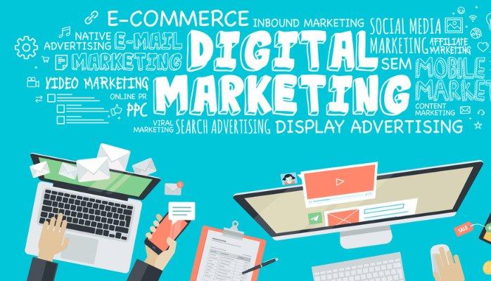 Digital Marketing School Network