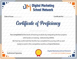 DMSN Certificates